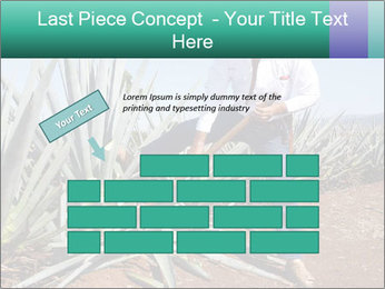 0000081198 PowerPoint Template - Slide 46