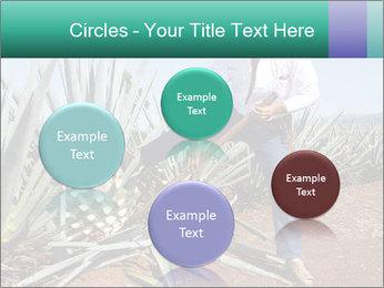 0000081198 PowerPoint Templates - Slide 77