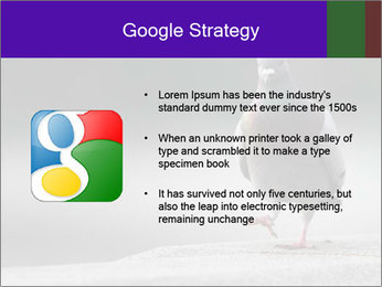 0000081201 PowerPoint Template - Slide 10