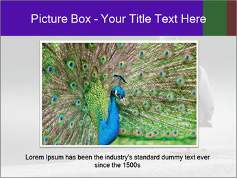0000081201 PowerPoint Template - Slide 16