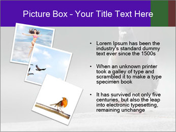 0000081201 PowerPoint Template - Slide 17