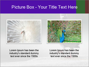 0000081201 PowerPoint Template - Slide 18