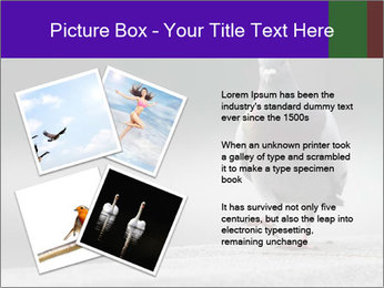 0000081201 PowerPoint Template - Slide 23