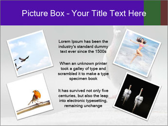0000081201 PowerPoint Template - Slide 24
