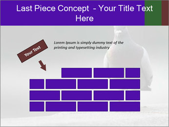 0000081201 PowerPoint Templates - Slide 46