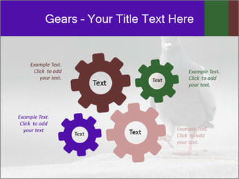 0000081201 PowerPoint Template - Slide 47