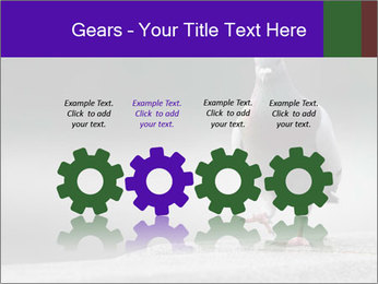 0000081201 PowerPoint Template - Slide 48