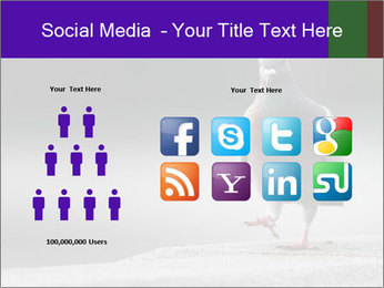 0000081201 PowerPoint Template - Slide 5