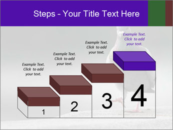 0000081201 PowerPoint Template - Slide 64