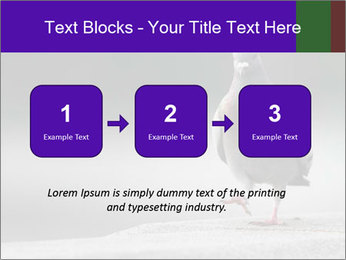0000081201 PowerPoint Template - Slide 71