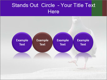 0000081201 PowerPoint Template - Slide 76