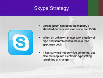 0000081201 PowerPoint Template - Slide 8
