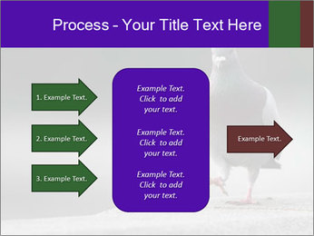0000081201 PowerPoint Template - Slide 85