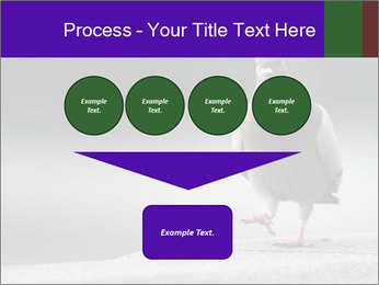 0000081201 PowerPoint Template - Slide 93