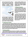 0000081201 Word Template - Page 4