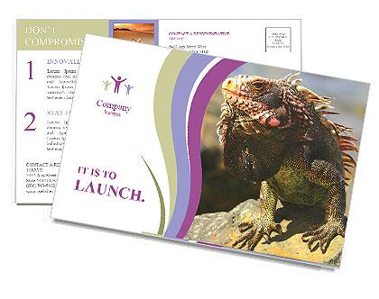 0000081206 Postcard Template