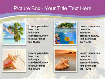 0000081206 PowerPoint Template - Slide 14