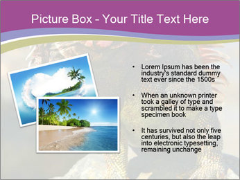 0000081206 PowerPoint Template - Slide 20