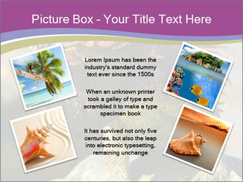 0000081206 PowerPoint Template - Slide 24