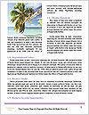 0000081206 Word Templates - Page 4