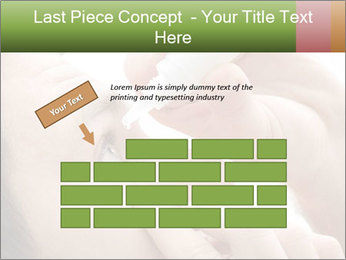 0000081208 PowerPoint Template - Slide 46