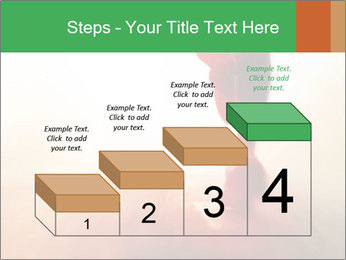 0000081209 PowerPoint Templates - Slide 64