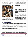0000081215 Word Templates - Page 4