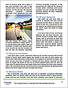 0000081217 Word Template - Page 4