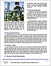 0000081222 Word Templates - Page 4