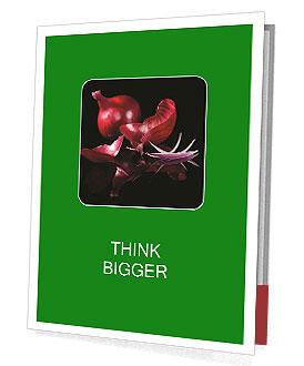0000081226 Presentation Folder