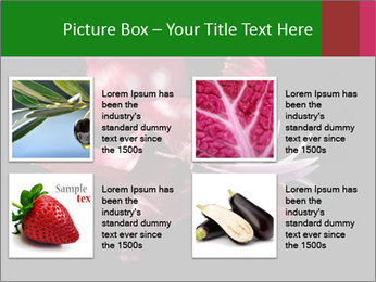 0000081226 PowerPoint Template - Slide 14