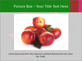 0000081226 PowerPoint Template - Slide 15