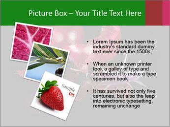 0000081226 PowerPoint Template - Slide 17