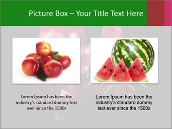 0000081226 PowerPoint Template - Slide 18