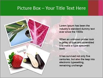 0000081226 PowerPoint Template - Slide 23