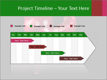 0000081226 PowerPoint Template - Slide 25