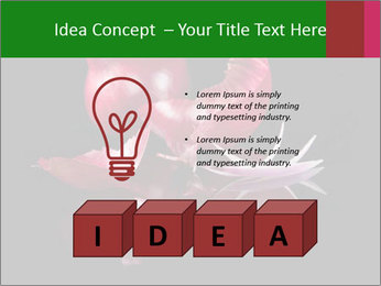 0000081226 PowerPoint Template - Slide 80