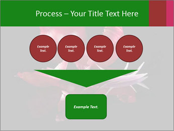 0000081226 PowerPoint Template - Slide 93