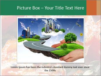 0000081229 PowerPoint Template - Slide 15