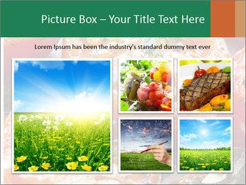 0000081229 PowerPoint Template - Slide 19