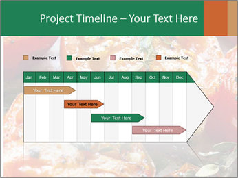 0000081229 PowerPoint Template - Slide 25