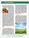 0000081229 Word Template - Page 3