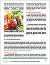 0000081229 Word Template - Page 4