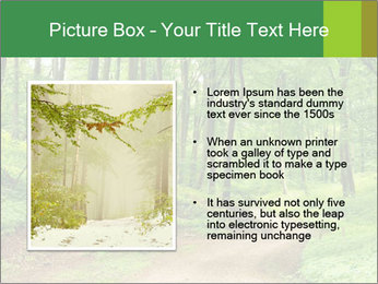 0000081233 PowerPoint Template - Slide 13