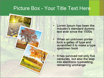 0000081233 PowerPoint Template - Slide 17