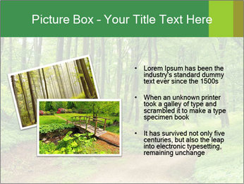 0000081233 PowerPoint Template - Slide 20