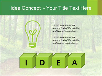 0000081233 PowerPoint Template - Slide 80