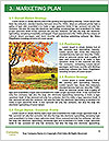 0000081233 Word Templates - Page 8