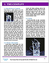 0000081241 Word Template - Page 3
