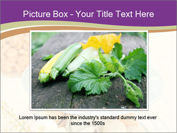 0000081243 PowerPoint Template - Slide 15